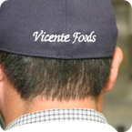 Vicente Foods Team